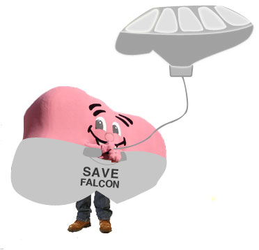 Save Falcon Morgan